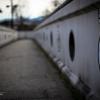 台紋が守る橋