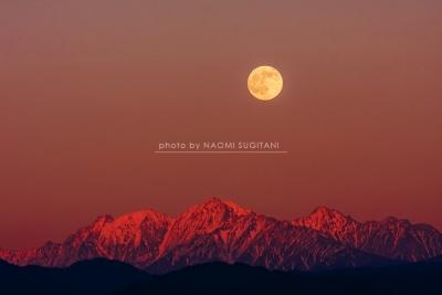月 moon :飛騨高山