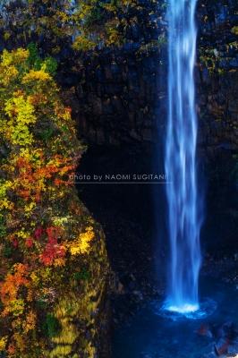 秋景色 :白川村 白水の滝