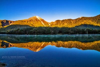 朝陽を映す:上高地 大正池