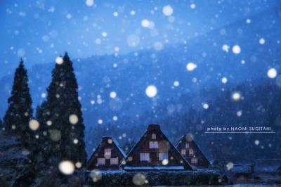 雪舞 :白川村