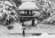 2015.02.01 みんな主役 ~白川村