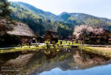 2015.04.27 櫻 ~白川村