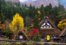 2015.11.08 秋・赤・雨~白川村
