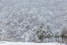 2015.12.27 幽かな雪景色 ~飛騨市