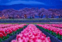 20190407富山